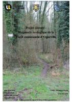 Rapport_Ognéville